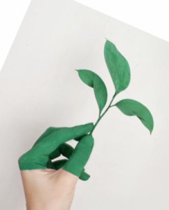 Del 18 de novembre al 9 de desembre es pot assistir a les jornades formatives per a la defensa del medi ambient