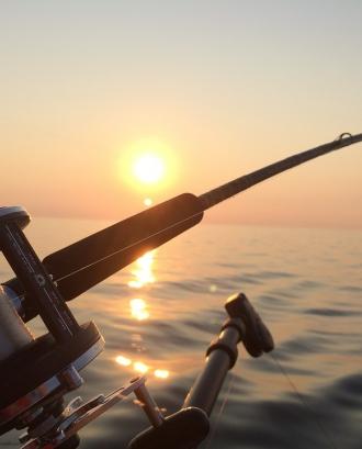Pesca. Font: Pixabay
