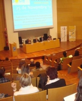 Auditori en una de les jornades tècniques. Font: Down Lleida