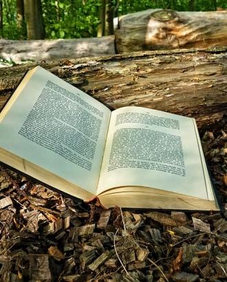 Subvencions per a la promoció d'activitats literàries 2020