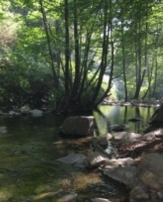 Subvencions per a projectes dins del Parc Natural i Reserva de la Biosfera del Montseny 2020