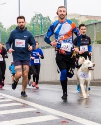 La cursa de 12 quilòmetres compta amb un desnivell de 575 metres i part de la recaptació es destinarà a causes solidàries. Font: Unsplash.