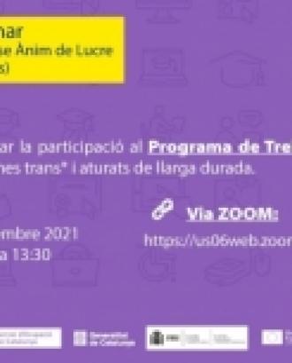 Webinar sobre el Programa de Treball i Formació del SOC. Font: Departament de Treball.